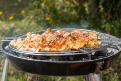 Meat on the BBQ grill. Stock Photos