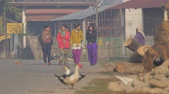 Girls walking early morning in village road,Chitwan,National Park,Nepal Stock Footage