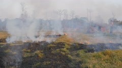 Farmer looking at burning field,Chitwan,National Park,Nepal Stock Footage