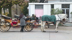 Carriage and tourists in Salzburg Stock Footage