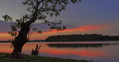 Tree Silhouette on river shore at evening sunset with calm water flowing slow Stock Footage