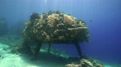 Cousteau's precontinent, wreck of underwater city - Shaab Rumi, Red Sea, Sudan Stock Footage