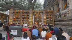 Pilgrims praying under Bodhi Tree,BodhGaya,Mahabodhi Temple Complex,India Stock Footage