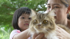 4K : Lovely little Asian girl and mother playing with Persian cat Stock Footage