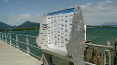 Cairns Australia - Fish Identification Station on Jetty Stock Footage