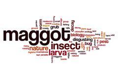 Maggot word cloud Stock Illustration