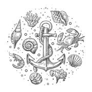 Set sea shell, coral, crab, shrimp and anchor Stock Illustration