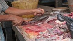 Cutting of fish on market,Chennai,India Stock Footage