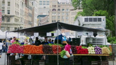 NEW YORK/USA -  July 13, 2016: People shopping at the Union Square Greenmarket Stock Footage