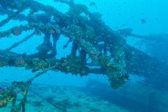 Shipwreck in Ocean Blue, Maldives Stock Photos