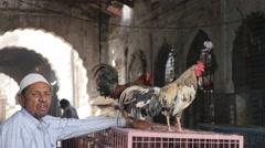 Muslim chicken seller,Hyderabad,India Stock Footage