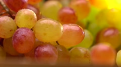 Red and green grape bunch 4K macro pan shot, shallow focus Stock Footage