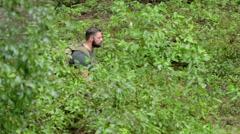 Male Hiker Walks Through Brush Stock Footage