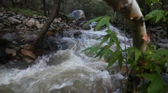 Water rushing down a stream in the mountains Stock Footage