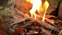 Close Detail of Small Campfire Stock Footage