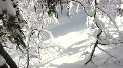 FIRST PERSON VIEW: Snowboarding through dense forest in snowy mountains Stock Footage