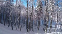 FPV: Snowboarding through freshly snowed forest in mountain ski resort Stock Footage