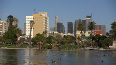 Los Angeles McArther Park Day 05 Palm Trees by Pond 4K Stock Footage