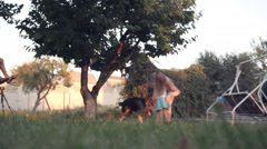 Ground level view of puppy dog running outside Stock Footage