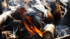 Burning coal and wood. Stock Footage