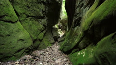 Green Canyon in the Carpathian mountains Stock Footage