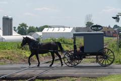 Horse wagon buggy in lancaster pennsylvania amish country Stock Photos