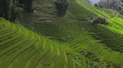 Time-lapse of the sun rays through the rice terraces valley in Sapa Vietnam Stock Footage