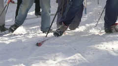 The legs of skiers. Ski poles and cross-country skiing Stock Footage