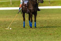 Polo Players Action Stock Photos