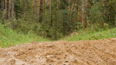 Dad and son riding bikes through the woods Stock Footage