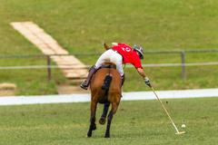 Polo Player Action Stock Photos