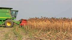 Kherson, Ukraine - September 16, 2016: Combine John Deere begins to harvesting Stock Footage