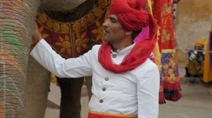 Man with turban and painted elephant,Jaipur,Gangaur,India Stock Footage