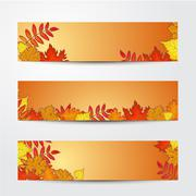 Set of banner templates with maple, oak, rowan fall leaves Piirros