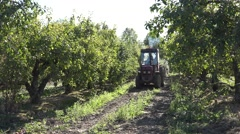 Farm tractor drive apple tree plantation at harvest time. 4K Stock Footage