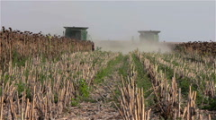 Two working harvesting combines in the summer field of sunflower seeds Stock Footage