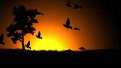 Birds take flight against a rising sun Stock Footage
