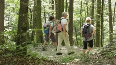 Group of mountain hikers walking in Triglav national park Stock Footage