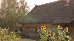 The old rural wooden house and sunflowers Stock Footage