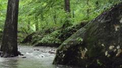 Pan of Flowing Creek in Slow Motion Stock Footage