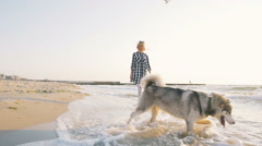 Young female playing with siberian husky dog on the beach at sunrise,slow motion Stock Footage