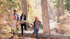 Energetic family running in forest, side view close up Stock Footage