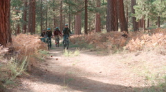Friends riding bikes on a forest path, front view, low angle Stock Footage