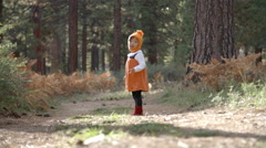 Asian toddler girl playing with fallen pine cone in a forest Stock Footage