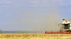 Harvester wheat field 4k video. Harvest farm thresher combine reel crops Stock Footage