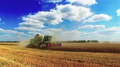 Thresher combine harvester reel cutter bars cutting wheat rye grain 4k video Stock Footage