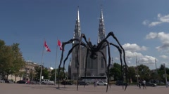 Notre Dame Basilica in Ottawa, Canada Stock Footage