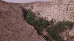 Ein Avdat - Greenery around Tsin Wadi (Israel aerial footage) Stock Footage