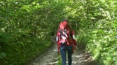 Trekking in forest. Woman walking on hiking trail Stock Footage