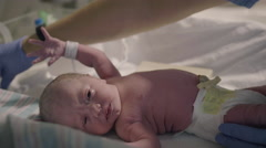 Nurse in Hospital puts First Diaper on Newborn Baby Stock Footage